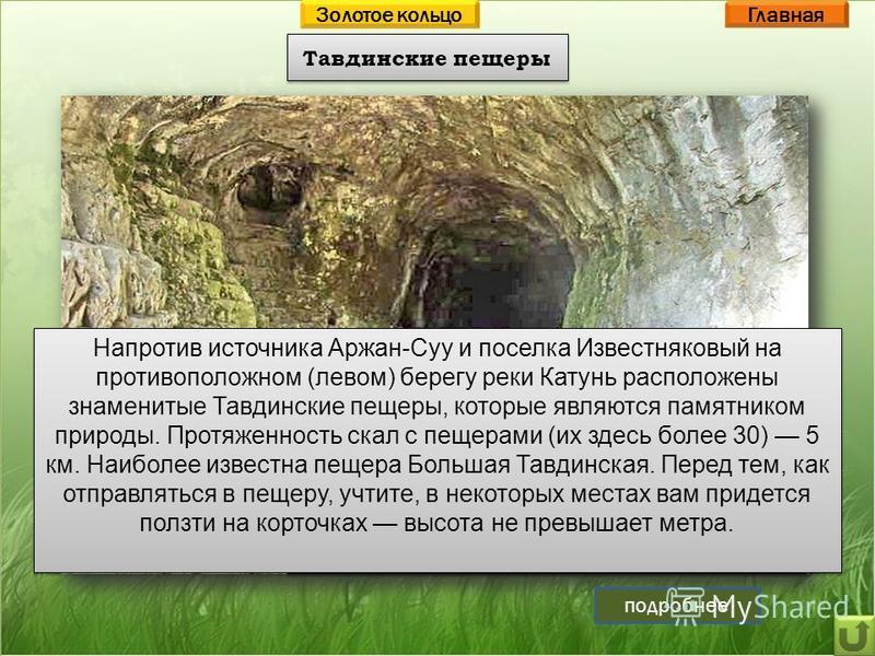 Тавдинские пещеры Главная Вход в Большую Тавдинскую пещеру Напротив источника Аржан-Суу и поселка Известняковый на противоположном (левом) берегу реки Катунь расположены знаменитые Тавдинские пещеры, которые являются памятником природы. Протяженность