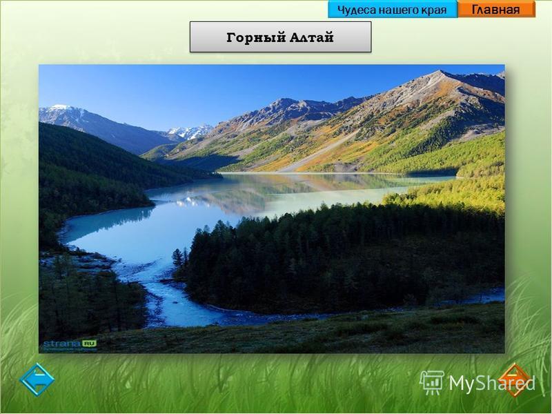 Главная Горный Алтай Чудеса нашего края