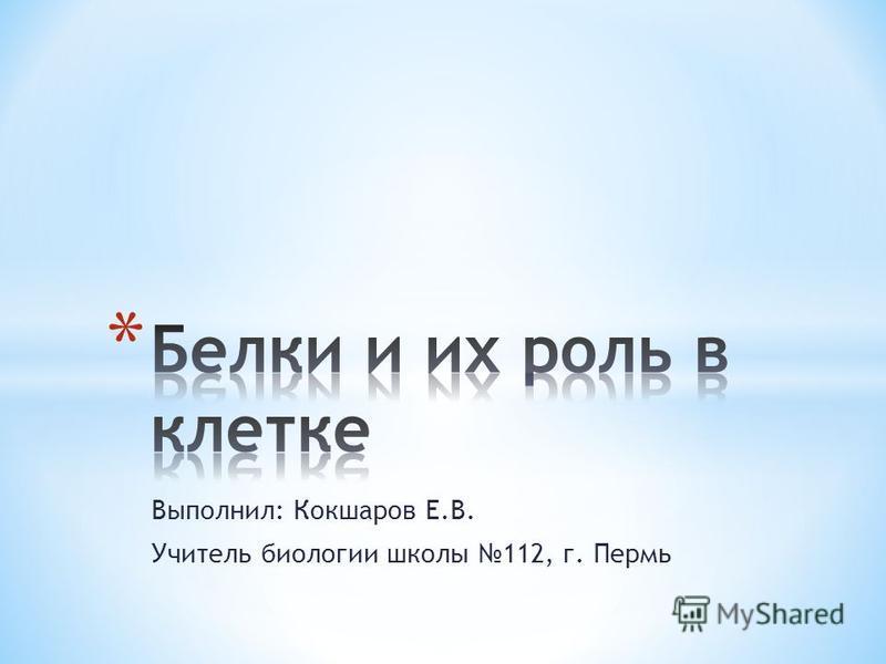 Выполнил: Кокшаров Е.В. Учитель биологии школы 112, г. Пермь