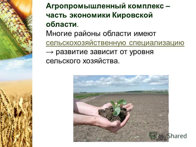 Агропромышленный комплекс – часть экономики Кировской области. Многие районы области имеют сельскохозяйственную специализацию развитие зависит от уровня сельского хозяйства. сельскохозяйственную специализацию