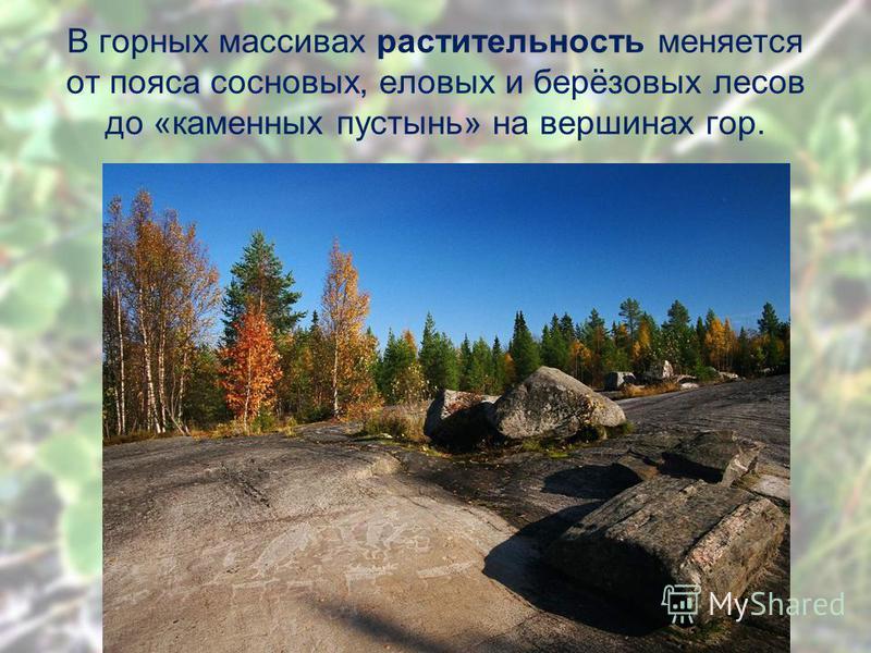 В горных массивах растительность меняется от пояса сосновых, еловых и берёзовых лесов до «каменных пустынь» на вершинах гор.