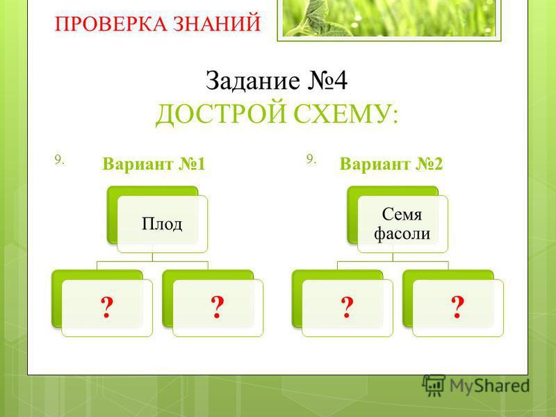 Задание 4 ДОСТРОЙ СХЕМУ: Вариант 1Вариант 2 ПРОВЕРКА ЗНАНИЙ Семя фасоли ? ? Плод ? ? 9.
