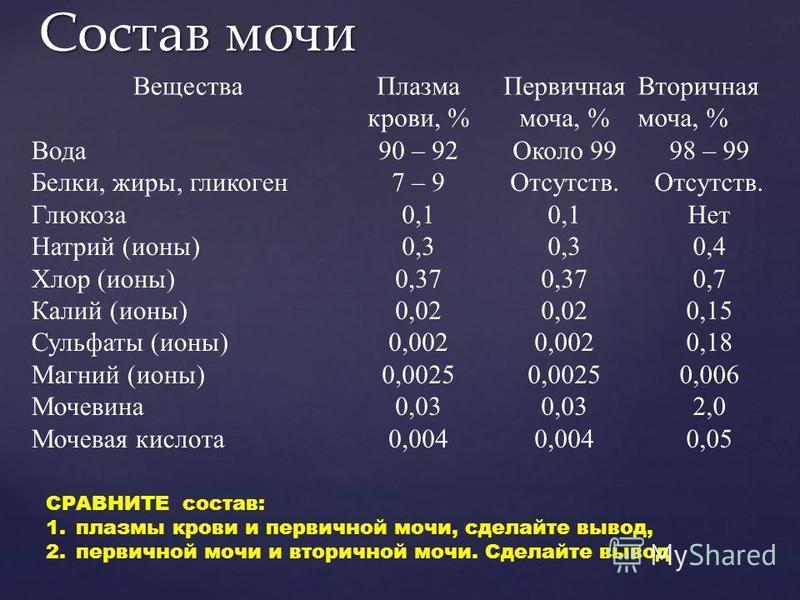 Состав мочи Вещества Плазма крови, % Первичная моча, % Вторичная моча, % Вода Белки, жиры, гликоген Глюкоза Натрий (ионы) Хлор (ионы) Калий (ионы) Сульфаты (ионы) Магний (ионы) Мочевина Мочевая кислота 90 – 92 7 – 9 0,1 0,3 0,37 0,02 0,002 0,0025 0,0