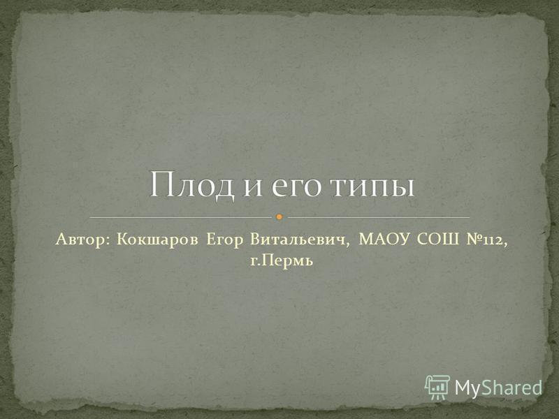 Автор: Кокшаров Егор Витальевич, МАОУ СОШ 112, г.Пермь