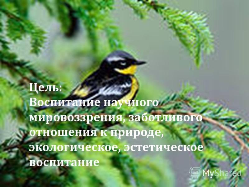 Цель : Воспитание научного мировоззрения, заботливого отношения к природе, экологическое, эстетическое воспитание