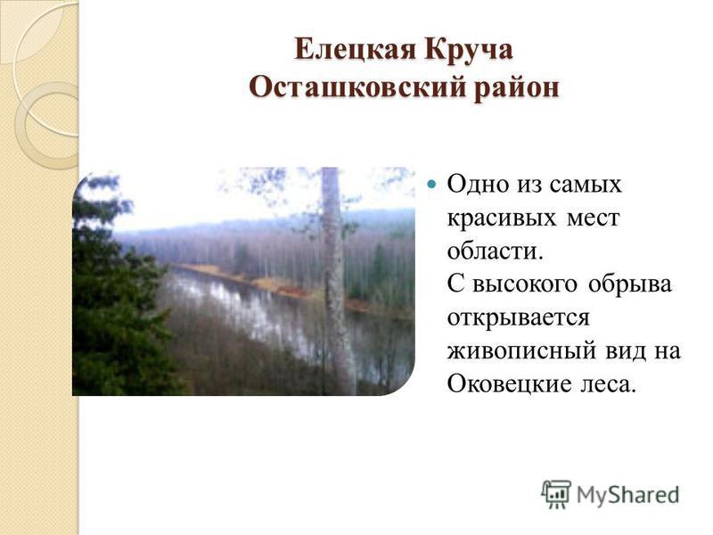 Елецкая Круча Осташковский район Одно из самых красивых мест области. С высокого обрыва открывается живописный вид на Оковецкие леса.