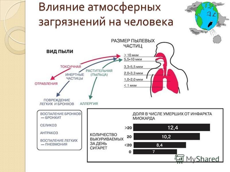 Поступление загрязняющих веществ в организм человека