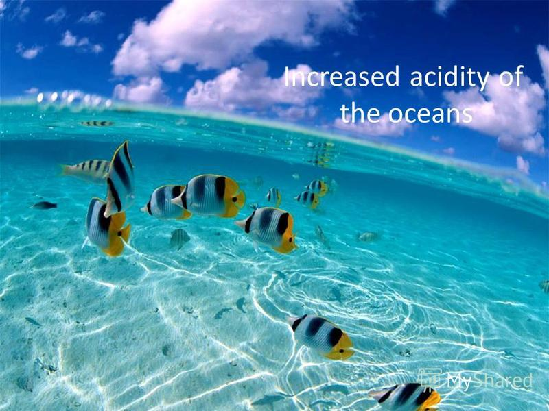 Increased acidity of the oceans