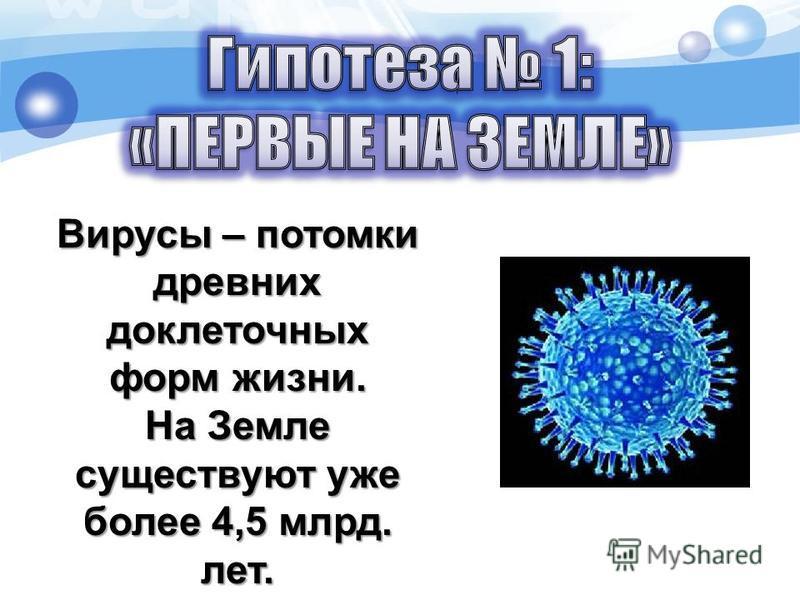 Вирусы – потомки древних доклеточных форм жизни. На Земле существуют уже более 4,5 млрд. лет.