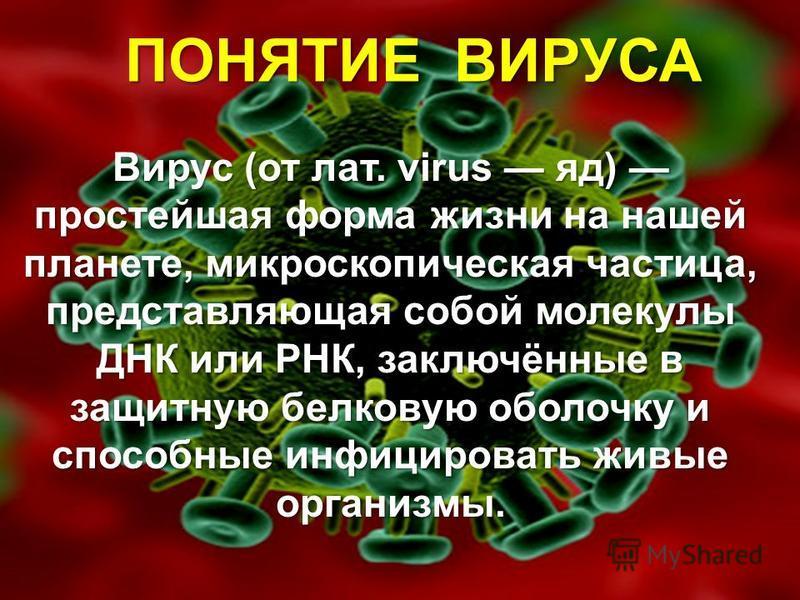 Вирус (от лат. virus яд) простейшая форма жизни на нашей планете, микроскопическая частица, представляющая собой молекулы ДНК или РНК, заключённые в защитную белковую оболочку и способные инфицировать живые организмы. ПОНЯТИЕ ВИРУСА