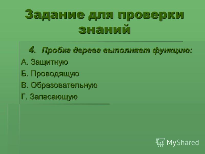 Задание для проверки знаний 4. Пробка дерева выполняет функцию: 4. Пробка дерева выполняет функцию: А. Защитную Б. Проводящую В. Образовательную Г. Запасающую