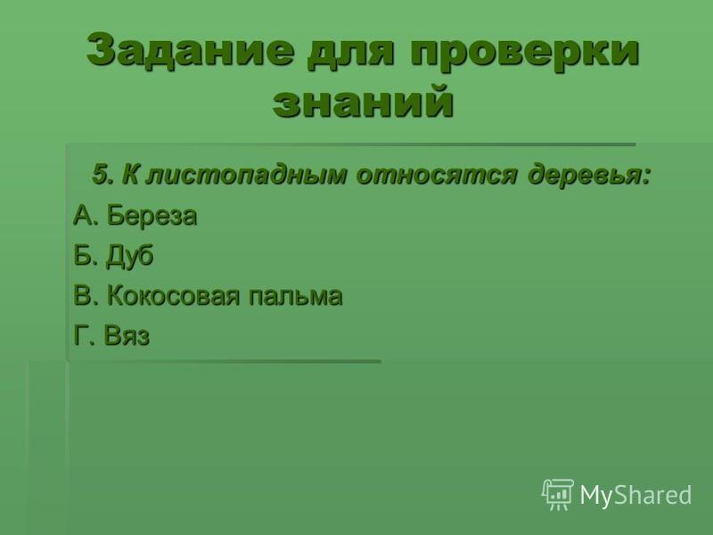 Задание для проверки знаний 5. К листопадным относятся деревья: 5. К листопадным относятся деревья: А. Береза Б. Дуб В. Кокосовая пальма Г. Вяз