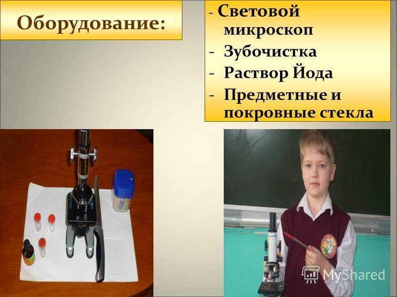 Цель работы:изучить луковую кожицу под микроскопом