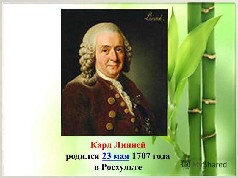 Карл Линней родился 23 мая 1707 года 23 мая в Росхульте