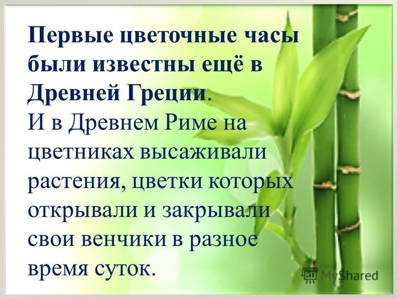 Первые цветочные часы были известны ещё в Древней Греции. И в Древнем Риме на цветниках высаживали растения, цветки которых открывали и закрывали свои венчики в разное время суток.