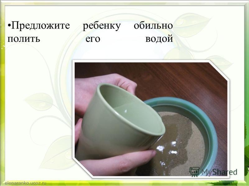 Предложите ребенку обильно полить его водой