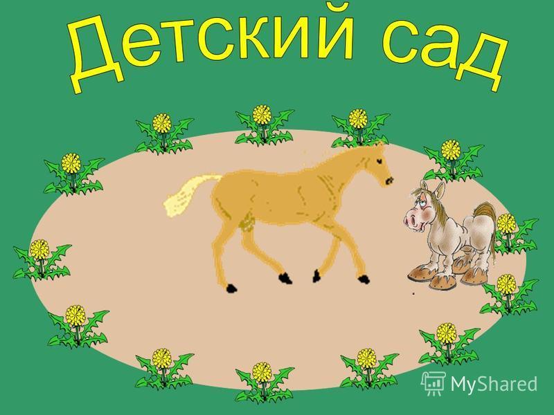 За жеребёночком сначала Мама-лошадка прискакала.