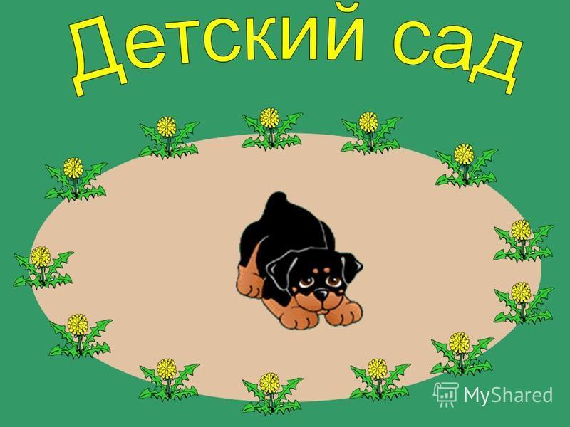 щенок,