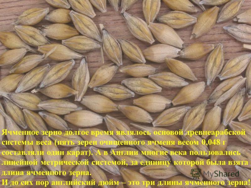 Ячменное зерно долгое время являлось основой древнеарабской системы веса (пять зерен очищенного ячменя весом 0,048 г составляли один карат). А в Англии многие века пользовались линейной метрической системой, за единицу которой была взята длина ячменн