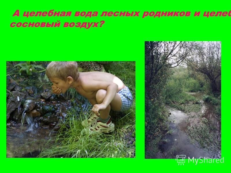 А целебная вода лесных родников и целебный сосновый воздух?