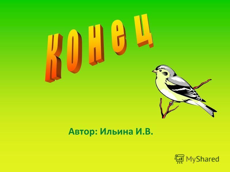 Автор: Ильина И.В.