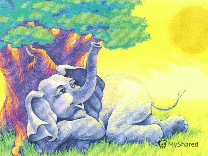 А солнце палило – Лучи не мешали: В тени баобаба Он двигал ушами.