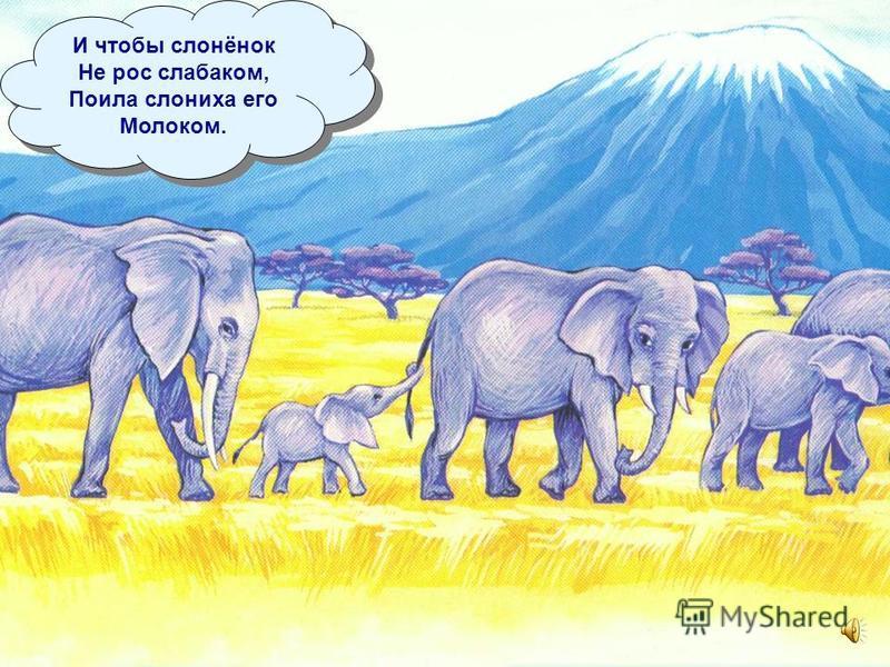 У мамы слонихи Родился слонёнок. В начале ему Не хватало силёнок.