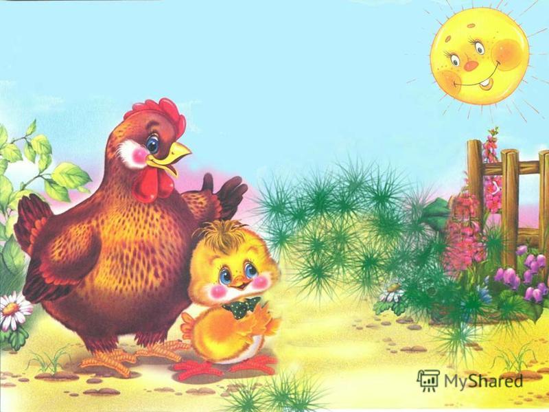 Только курица одна – Петушиная жена – Сыну зёрнышко дала, На прогулку повела.