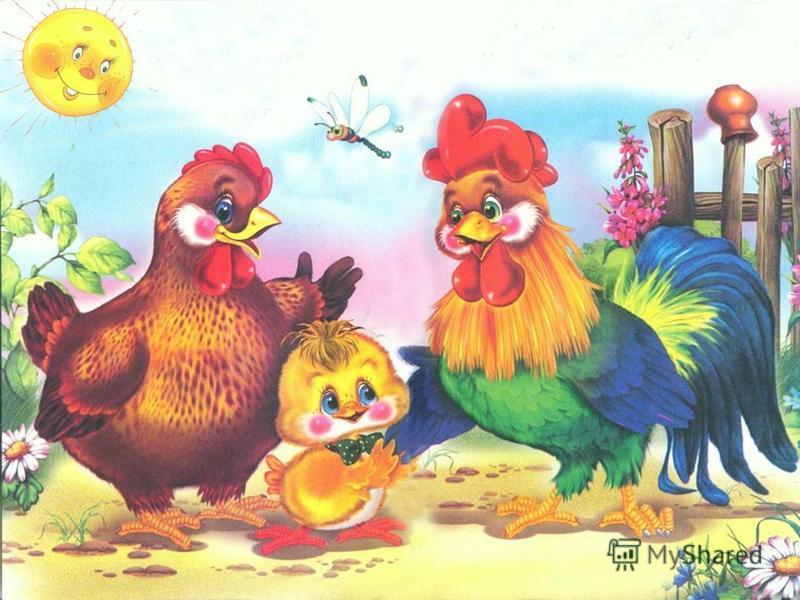 Подошёл к цыплёнку папа И пожал цыплёнку лапу!