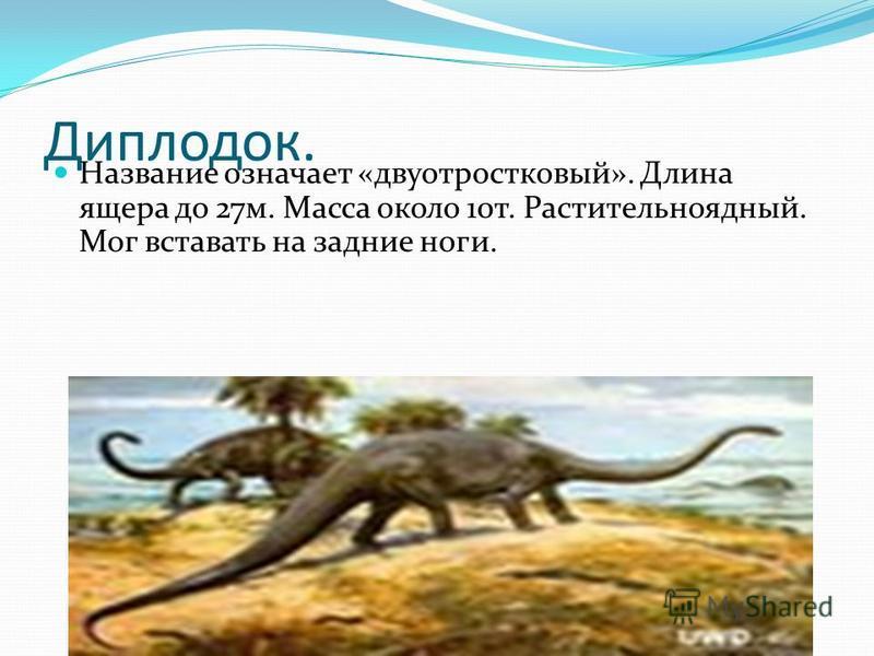 Диплодок. Название означает «двуотростковый». Длина ящера до 27 м. Масса около 10 т. Растительноядный. Мог вставать на задние ноги.