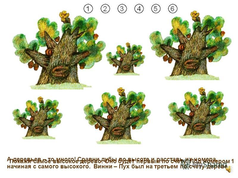 11 Правильно! Но пчелки не видели песенку Винни – Пуха! А может, песенка упала под дерево?