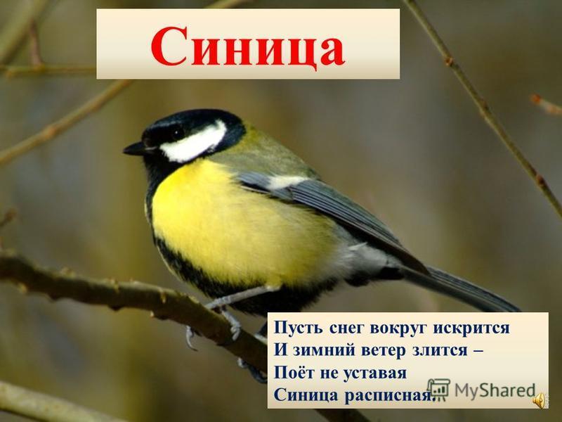 Журавли Птицы с длинными ногами До весны простились с нами. Машут крыльями вдали И курлычут журавли.