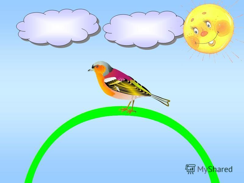 А зяблик, хоть лесная птица, В зелёной ленточке гнездится;