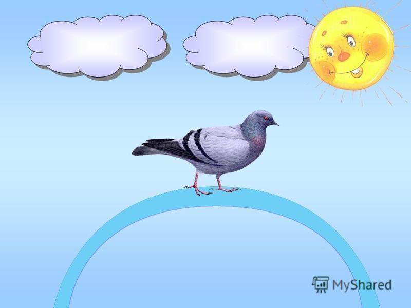 Наш голубь, совершив полёт, На ленте голубой заснет;