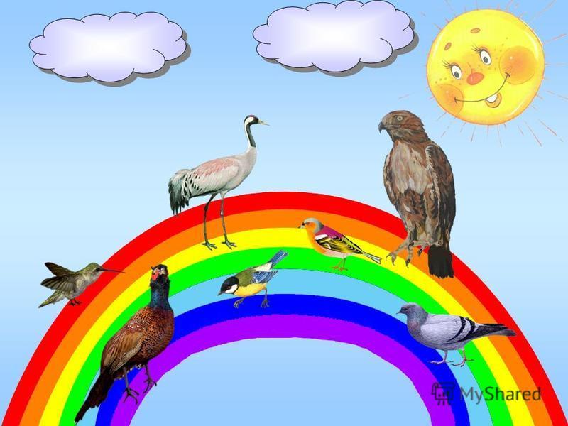 Сейчас послушай поскорей о птичках, что живут на ней: