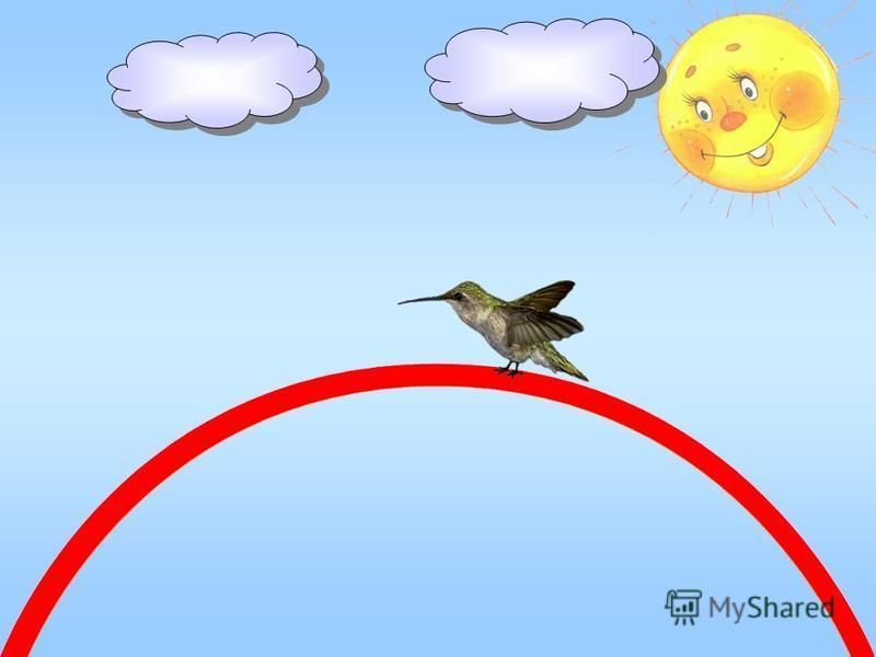 Колибри – маленькая птица – На красной ленточке мостится;
