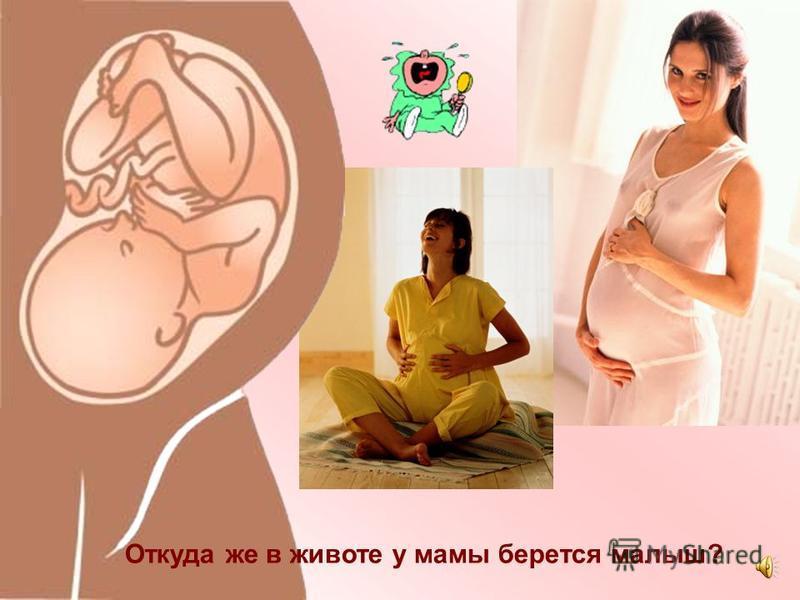 Ребенок начинает расти у мамы в животике. Там для этого есть специальное место. Оно называется матка. Малышу там тепло и уютно.