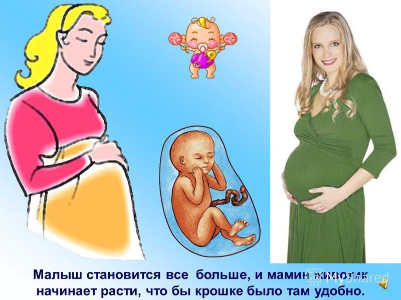 Малыш соединен с мамой специальной трубочкой – пуповиной. Через нее он дышит и кушает.