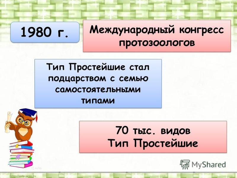 1980 г. Международный конгресс протозоологов Тип Простейшие стал подцарством с семью самостоятельными типами 70 тыс. видов Тип Простейшие 70 тыс. видов Тип Простейшие