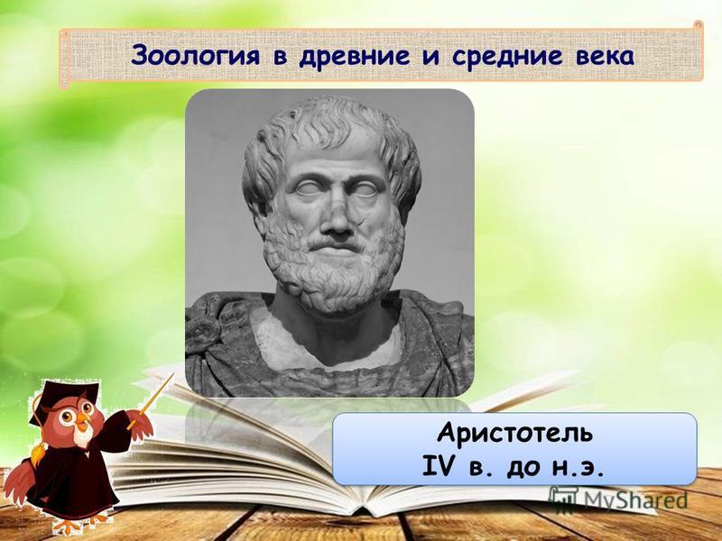 Зоология в древние и средние века Аристотель IV в. до н.э. Аристотель IV в. до н.э.