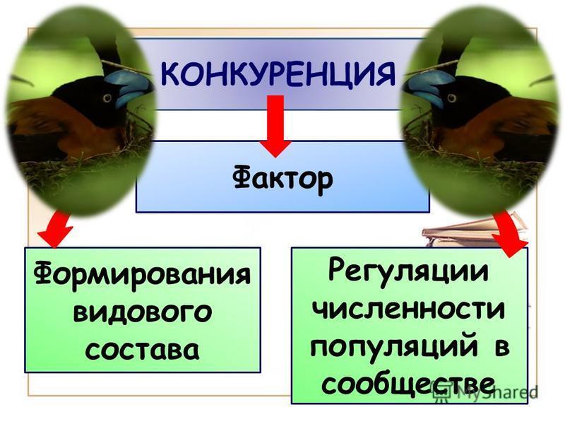 КОНКУРЕНЦИЯ Формирования видового состава Регуляции численности популяций в сообществе Фактор