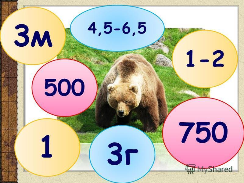 3 м 4,5-6,5 500 1-2 3 г 750 1