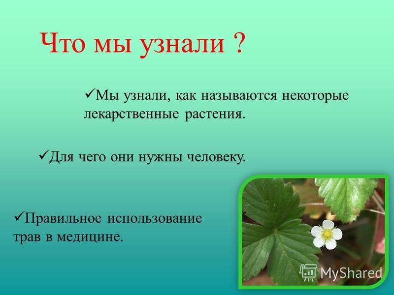 Что мы узнали ? Мы узнали, как называются некоторые лекарственные растения. Для чего они нужны человеку. Правильное использование трав в медицине.