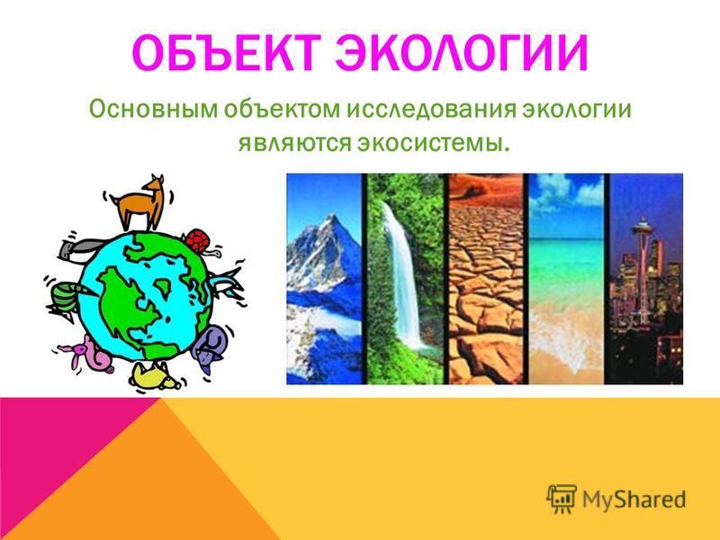 ОБЪЕКТ ЭКОЛОГИИ Основным объектом исследования экологии являются экосистемы.