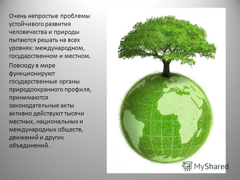 Очень непростые проблемы устойчивого развития человечества и природы пытаются решать на всех уровнях: международном, государственном и местном. Повсюду в мире функционируют государственные органы природоохранного профиля, принимаются законодательные