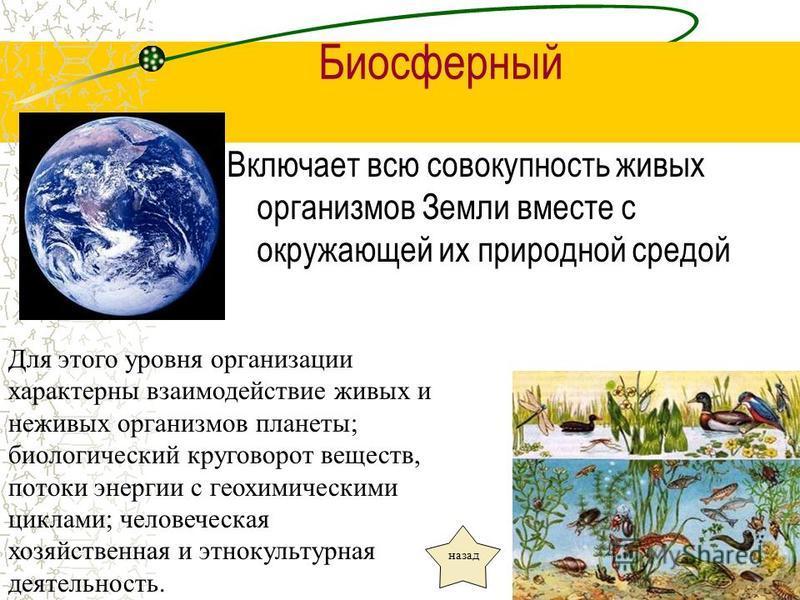 Биосферный Включает всю совокупность живых организмов Земли вместе с окружающей их природной средой Для этого уровня организации характерны взаимодействие живых и неживых организмов планеты; биологический круговорот веществ, потоки энергии с геохимич