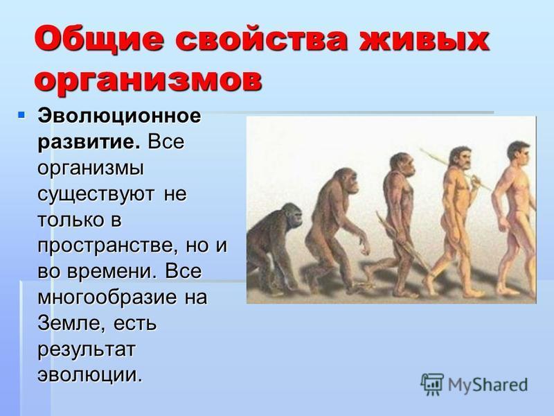 Общие свойства живых организмов Эволюционное развитие. Все организмы существуют не только в пространстве, но и во времени. Все многообразие на Земле, есть результат эволюции. Эволюционное развитие. Все организмы существуют не только в пространстве, н