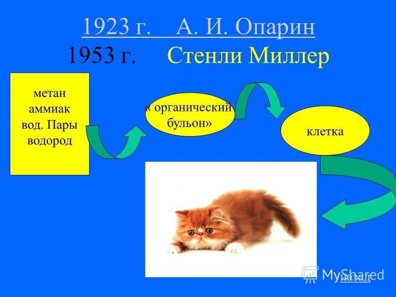 1923 г. А. И. Опарин 1923 г. А. И. Опарин 1953 г. Стенли Миллер метан аммиак вод. Пары водород клетка назад « органический бульон»