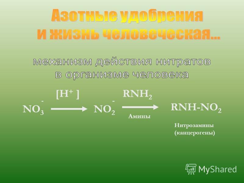 NO 3 [H + ] NO 2 RNH 2 RNH-NO 2 Амины Нитрозамины (канцерогены)