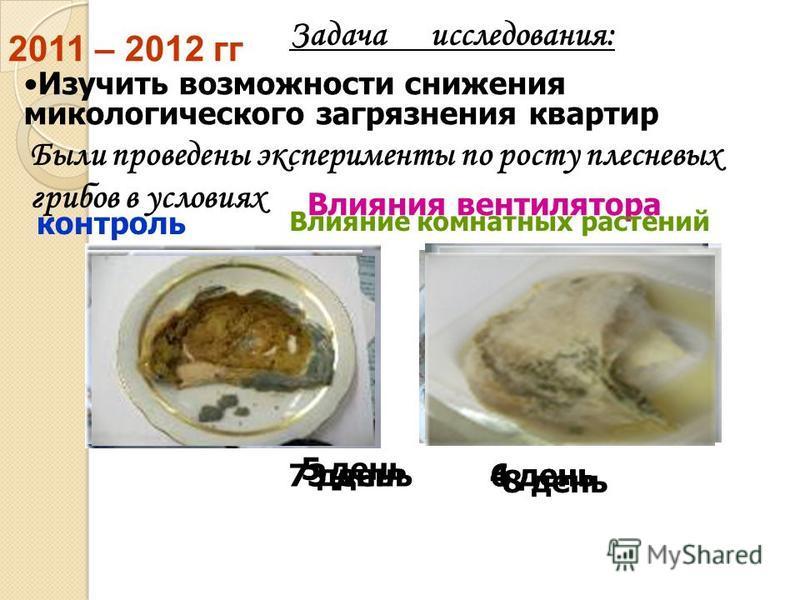 Задача исследования: Были проведены эксперименты по росту плесневых грибов в условиях контроль Изучить возможности снижения микологического загрязнения квартир 3 день 5 день 7 день Влияния вентилятора 2011 – 2012 гг Влияние комнатных растений 4 день